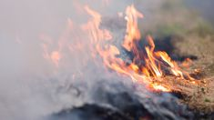 Controlled burns spark fear among Canterbury residents