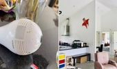 The hidden camera was found in this light fitting in the kitchen of the rural Auckland property. Photo / Michael Kouk