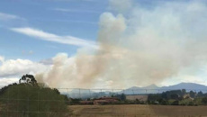 Residents evacuate as new fire breaks out in Nelson
