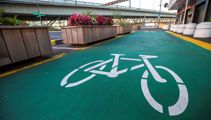 Mike Hosking: Greenwashing cycle lanes doesn't make them any busier