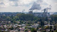 Malcolm Campbell: Kawerau house prices increase as industries return
