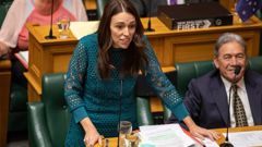 Jacinda Ardern, Simon Bridges, and Winston Peters clashed over tax in the House (Video: Parliament TV)