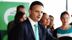 Green Party co-leader James Shaw attacked, in hospital