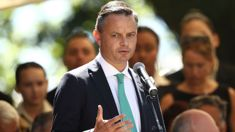 Green Party co-leader James Shaw suffers suspected fractured eye socket in attack