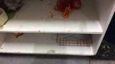 Complaints over 'grubby' Napier hostel spark debate