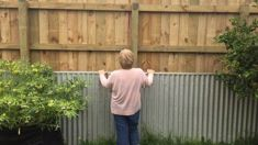 Lower Hutt residents in fence row for subdivision neighbours
