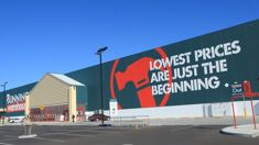 Dog owners stunned by bizarre Bunnings rule