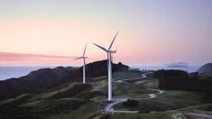 Matt Burgess: Expense of renewable energy under discussion