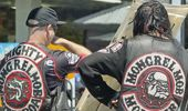 Andrew Dickens: What's going on with the Mongrel Mob these days?
