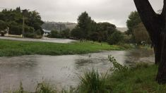 Man's body found in Heathcote River, Christchurch