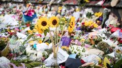 Donations have come in from all over the world. (Photo / NZ Herald)(