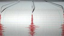 Earthquake early warning system, worth it?
