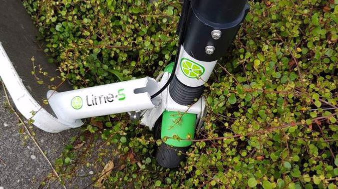 A Lime scooter that snapped while being ridden on Westhaven Drive, causing a serious accident. (Photo / Supplied)