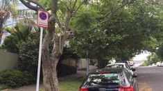 Peter Haynes: Loophole allowing cars to legally park on berms