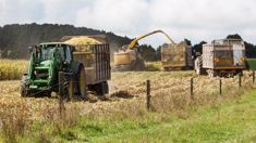 Chris Lewis: Shortage of training courses hurting farming industry