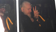 Julian Assange will be extradited - law expert