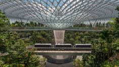 Mike Yardley: Changi Airport is a world-beater