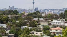 Paul Drum: New Zealand likely to get a light Capital Gains Tax