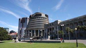 Shane Te Pou has personally witnessed some of the toxic behaviour at Parliament. (Photo / File)