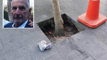 Man dies after falling in council tree pit