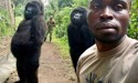 Upright gorillas go viral after they pose for photo