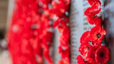 Talkback callers share feelings over Anzac Day cancellations