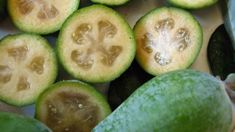Roger Matthews: Concerns about impact of fungal disease on feijoa crops