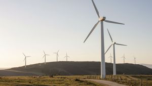 It will look into other energy options such as offshore wind, solar batteries and hydrogen. Photo / Getty Images.