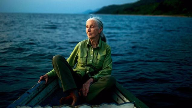 Jane Goodall's strong words for climate change deniers