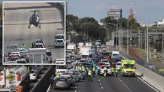 Framework Services to conduct internal review after client died on Auckland motorway