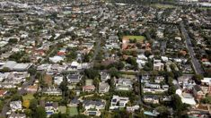 Auckland housing market hits 11-year low, data shows