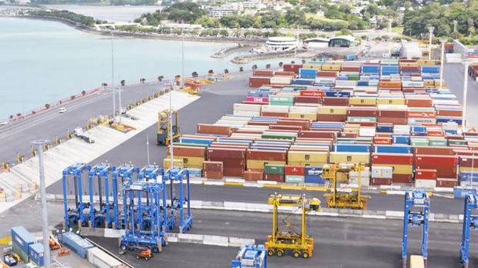 John Tamihere wants to sell the Ports business and keep the land in public hands. (Photo / Leon Menzies)