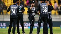 Martin Guptill and Jimmy Neesham on the Cricket World Cup