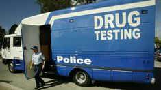 Heather du Plessis-Allan: Government must accept drug driving is a problem