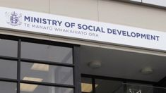 Viv Rickard: Ministry of Social Development defends practices
