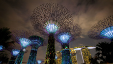 Megan Singleton: What to do in Singapore