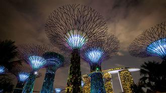 Megan Singleton: What to do in Singapore