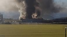 Firefighters battling massive Queenstown blaze at car dealership