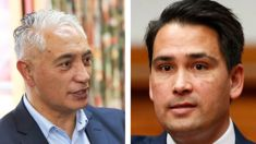 Andrew Dickens: Alfred Ngaro's Christian Party feels it was ordered from a catalogue