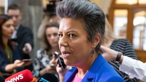 Paula Bennett has criticised Trevor Mallard's handling of the sexual assault allegations at Parliament. (Photo / NZ Herald)