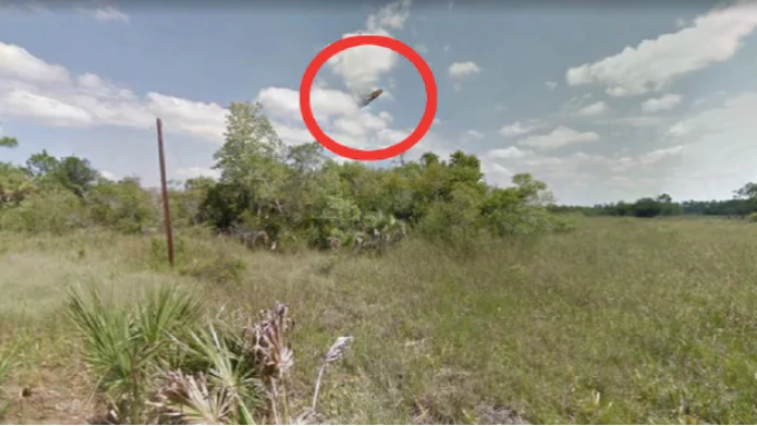 A UFO reportedly spotted on Google Maps. (Photo / Supplied)