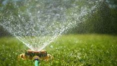 Murray Olds: Sydney to face water restrictions as drought impacts continue