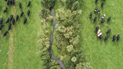 Farmers will benefit from a new $229m package aimed at cleaning up waterways. (Photo / Dairy NZ)