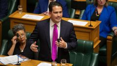 Simon Bridges says there is nothing in the budget for most New Zealanders. (Photo / NZ Herald)