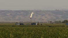US Department of Energy labels natural gas 'molecules of US freedom'