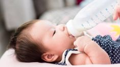 Marco Marinkovich: China's planned baby formula expansion could harm New Zealand's economy