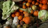 New Zealand wastes tens of thousands of tonnes of food waste a year. (Photo / Getty)
