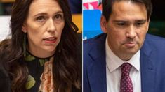 Heather du Plessis-Allan: Both polls were wrong - the system is worthless