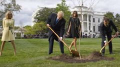 US President Donald Trump and French President Emmanuel Macron plant a tree watched by Trump's wife Melania and Macron's wife Brigitte. (Photo / Getty)