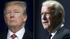 Dan Mitchinson: Poll shows top Democrat candidates would beat Donald Trump
